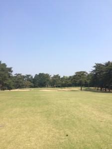 golf_toride